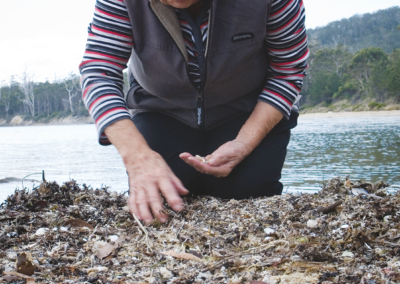 Luna Tunapri, Collecting shells, Bruny Island